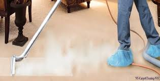 ny carpetcleaning nyc com wp content plugins widge