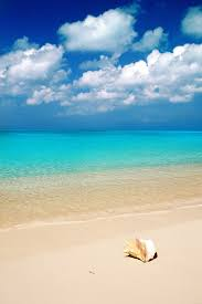 bahamas water google search turquoise water pinterest