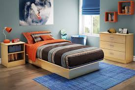 Bedroom Designs Blue Carpet Furniture Decorating Marvelous Mirrored Nightstand With Tall