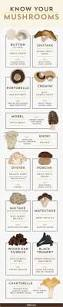 Cooking Infographic cooking with mushrooms everything you need to know infographic