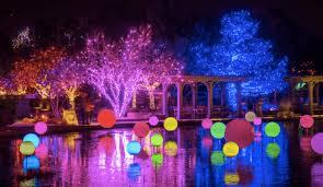 hudson gardens christmas lights 36 things to do in denver this december 2017 the denver ear