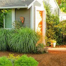 132 best dog friendly gardens images on pinterest pets cats and