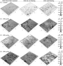 concrete surface topography as a function of freeze thaw exposure