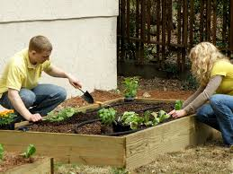 how to build a super easy raised bed bonnie plants