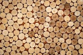 abstract of wood logs texture background stock photo colourbox