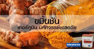 curcuma en cuisine ขม นช น interpharma