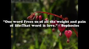 quotes heart bleeding nice quotes about love images of love quotes youtube