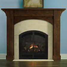 36 Electric Fireplace Insert by Heat N Glo Cerona
