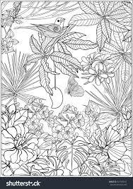 tropical wild birds plants tropical garden stock vector 421599541