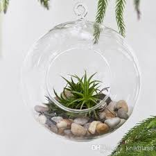 8cm 10cm 12cm 15cm hanging glass ball planter air planter