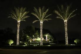 zimmermantreeservice services lighting