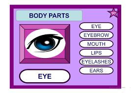 97 free esl body parts powerpoint presentations exercises
