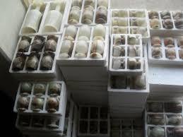 qatar collections onyx ornaments in qatar
