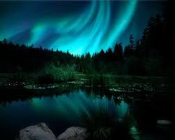 northern lights jasper national park northern lights aurora borealis landscape photograph christmas