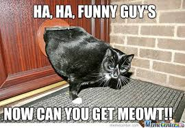 Fat Cat Meme - fat cat by mcbutters meme center