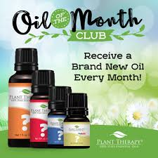 plant of the month club of the month club essential oils plant therapy