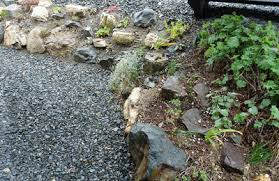 Rocks For The Garden What To Do With Rocks In The Garden Newfoundland Gardening
