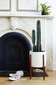 Esszimmerst Le Gemischt Die Besten 25 Wohnzimmer Pflanzen Ideen Auf Pinterest