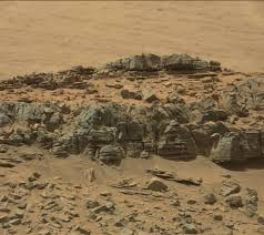 ufo hunters spot lizard like animal on mars houston chronicle