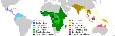 alligators in map crocodiles of the no alligators or caimans 1172x368