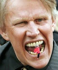 Gary Busey Meme - 31 reasons gary busey is a national treasure and a gift to the world