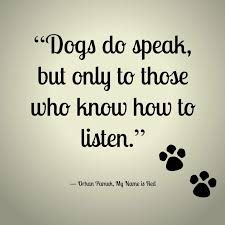 boxer dog sayings 314 best nothing u0027s better than a boxer images on pinterest
