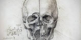 bbc culture leonardo da vinci u0027s groundbreaking anatomical sketches
