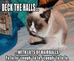 19 Awesome Grumpy Cat Christmas - 2012 s best of grumpy cat christmas gallery ebaum s world