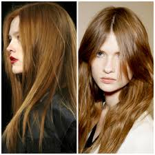hair color formula bronzed brown hair color 1000 images about hair color on pinterest