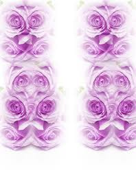 tallahassee florist england u0027s florist