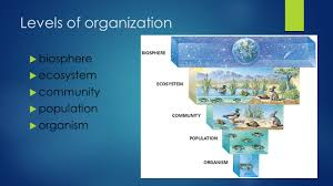 intro to ecology turk chapters levels of organization biosphere