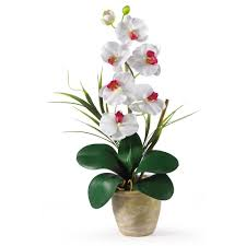nearly natural 26 in dancing lady silk orchid flower arrangement