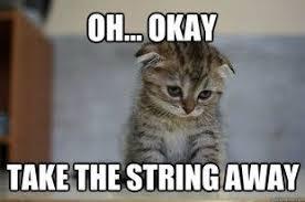 Sad Okay Meme - sad kitten meme mans best friend pinterest meme cat and animal