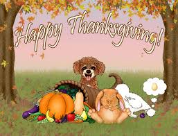 awesome thanksgiving quotes happy thanksgiving images reverse search
