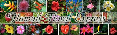 florist express hawaii floral express hawaii tropical flowers and fruits