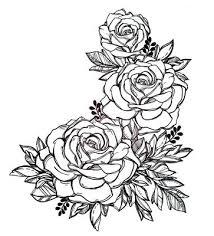 imagenes para colorear rosas colorear rosas para colorear rosas blancas realtedcantu info