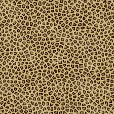 Design Your New Home Online Free Cheetahs Cheetah Print And Background On Pinterest Idolza