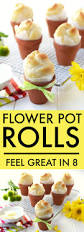 flower pot rolls feel great in 8 blog