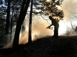 fire person smoke lomakatsi restoration projectlomakatsi