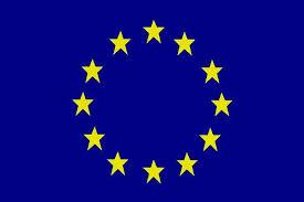 chambre de commerce europ馥nne lancement officiel des activités de la chambre de commerce