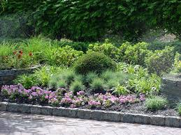how to design a shade perennial garden margarite gardens