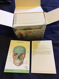netters anatomy flashcards image collections human anatomy learning