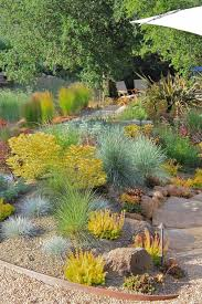 plant in gravel landscape contemporary with path edging d stair