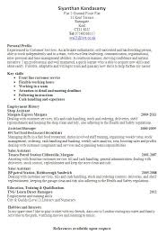 Resume Profile Template Best 25 Cv Examples Ideas On Pinterest Professional Cv Examples