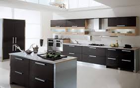 Kitchen Design Modern Contemporary - modern contemporary kitchen design kitchen design ideas