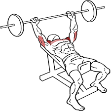 Chest Flat Bench Press The Best Upper Chest Exercise U2013 For Perfect Square Pecs Chest