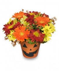 elkton florist flowers elkton md fair hill florist