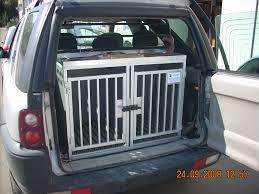 porta cani per auto trasportino trasportini cassette trasporto cani per auto e fuoristrada
