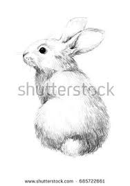 furry stock images royalty free images u0026 vectors shutterstock