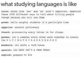 German Language Meme - fun with language tumblr